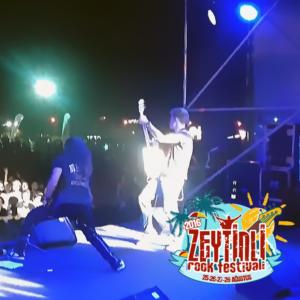 zeytinli-live-video-news